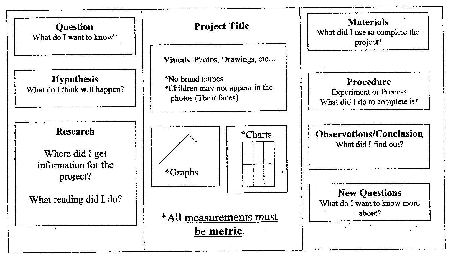 science fair essay layout term paper service science fair essay layout